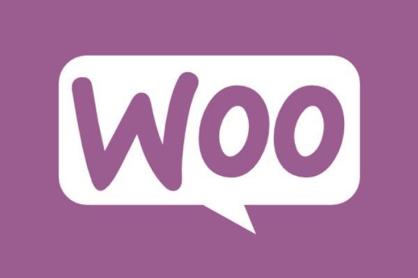 WooCommerce en Vendit Systeem